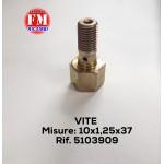 Vite - 5103909