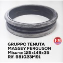 Gruppo tenuta Massey Ferguson - 981023M91