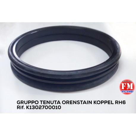Gruppo tenuta Orenstain Koppel RH6 - K1302700010