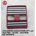 Calandra radiatore cpt. - 5175979
